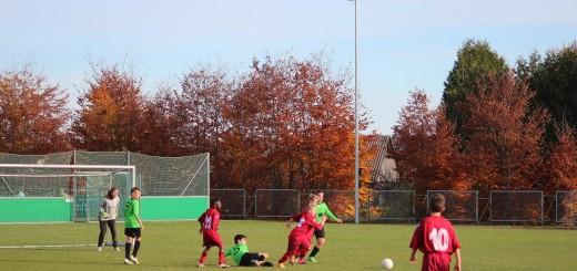 D Jun. - Kickers Hergershausen 4:0 08.11.15